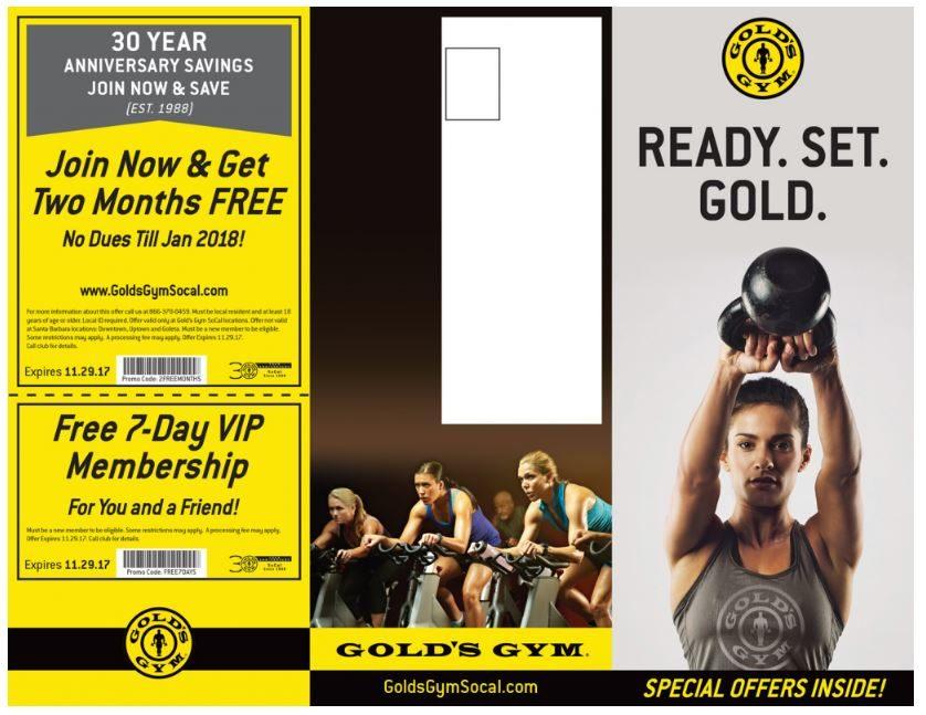 Gym brochure example
