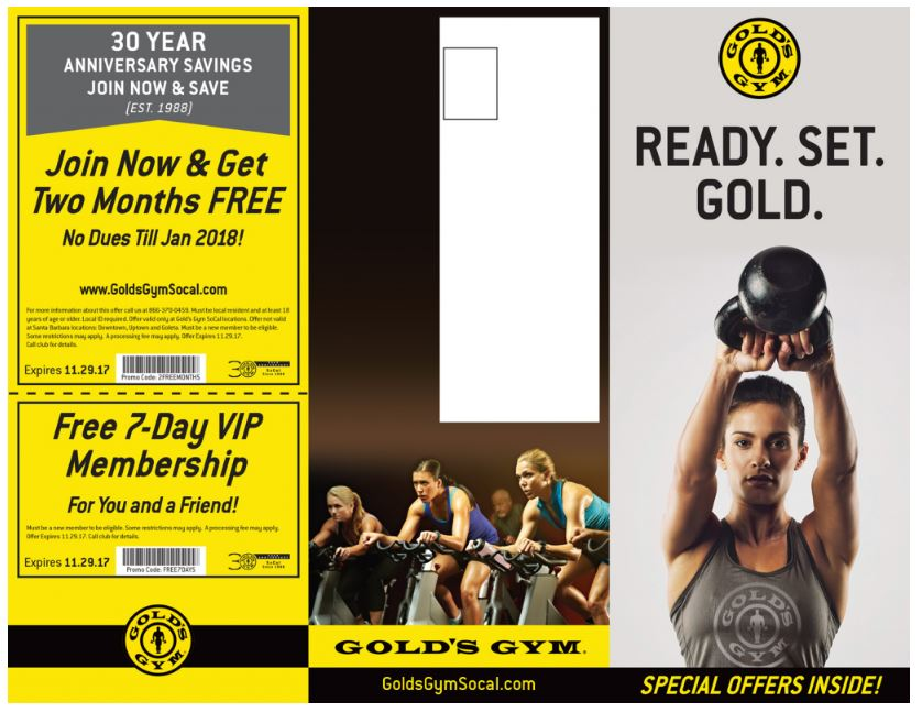 Gym brochure example