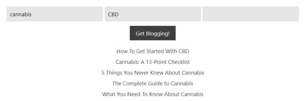 Blog idea generator site results