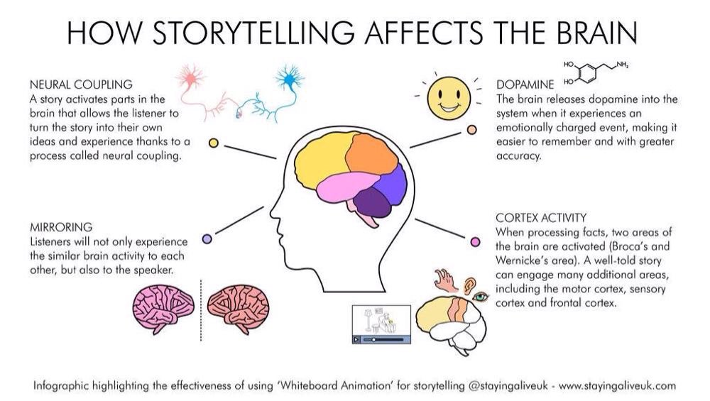 How stories affect the brain