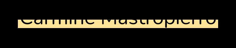 Carmine Mastropierro logo